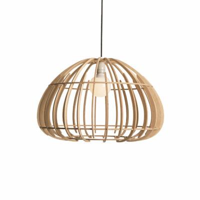 protea-light